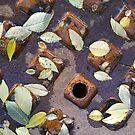 Autumn Leaves on a Rusty Manhole Cover by Jeanne Kramer-Smyth