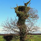 Delusional Tree Somewhere in Norfolk. by Billlee