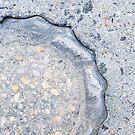 Gray on Gray Sidewalk Snapshot by Jeanne Kramer-Smyth