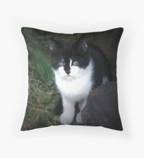 HAPPINESS IS A WARM KITTEN: Baby Jacki Throw Pillow