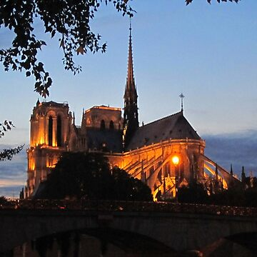 Notre Dame Cathedral In Paris by Johnhalifax