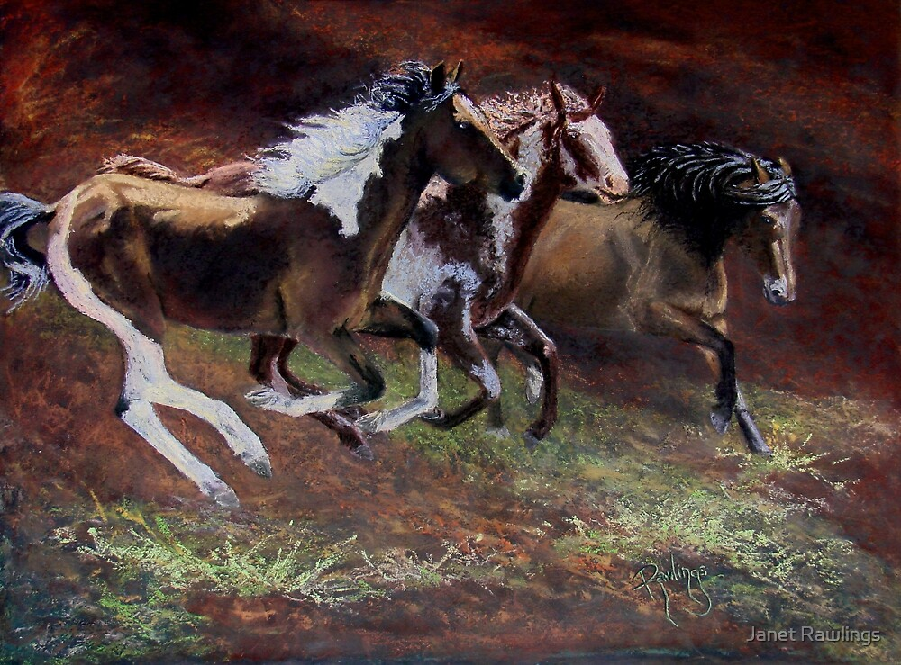 """3 Horses"" by Janet Rawlings"