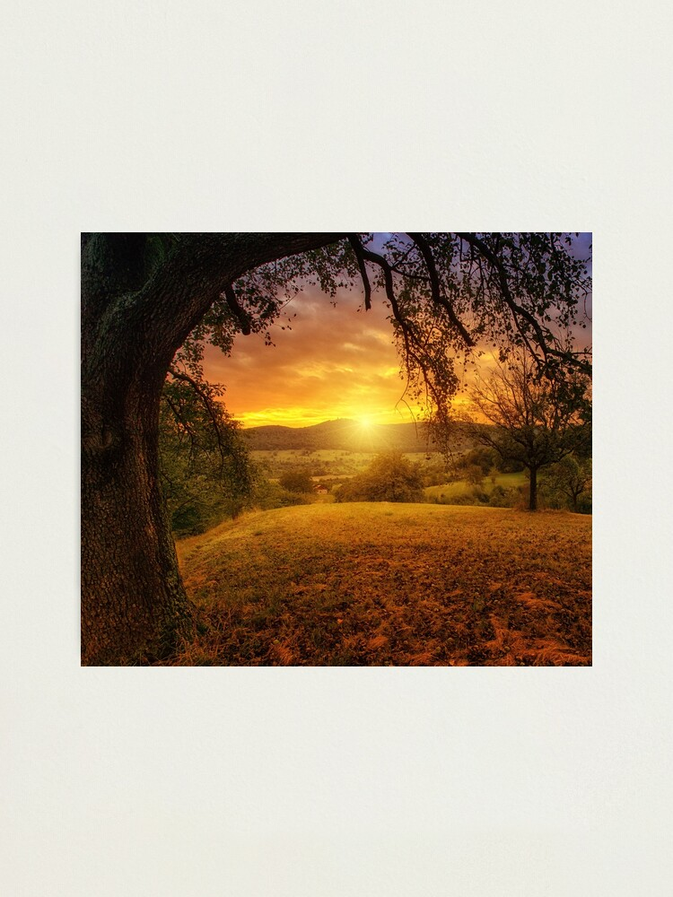 Alternate view of Spectacular Sunset Photographic Print