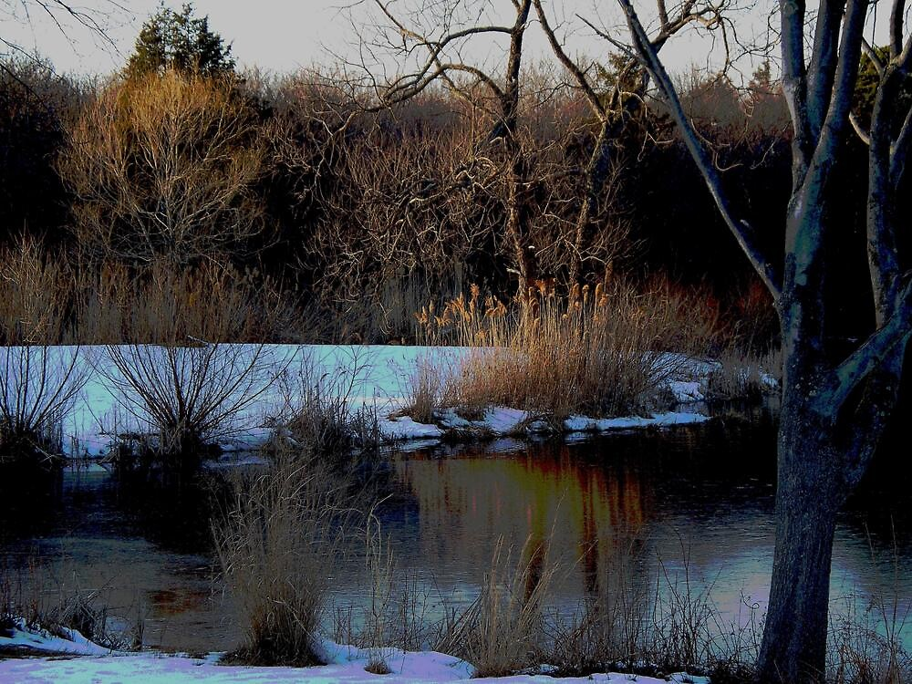 Winter on Echo Lake  by fiat777