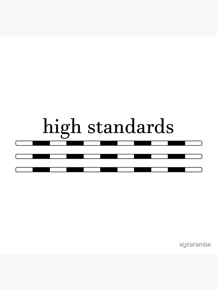 High Standards by aycaramba