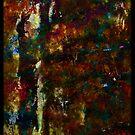 Inferno by Lior Goldenberg