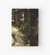 Dont wake the pixies in the forest Hardcover Journal