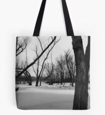 Below Zero Tote Bag