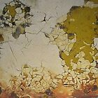 Weathered Abstract Yellow and Orange Rusty Crackle by Jeanne Kramer-Smyth