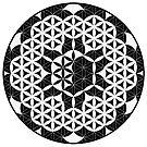 Flower-of-Life Yin and Yang by Cveta