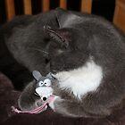 Smokey & Mousey , Cuddles Time by AnnDixon