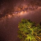 Milky Way in The Kimberly by Toddy4x4