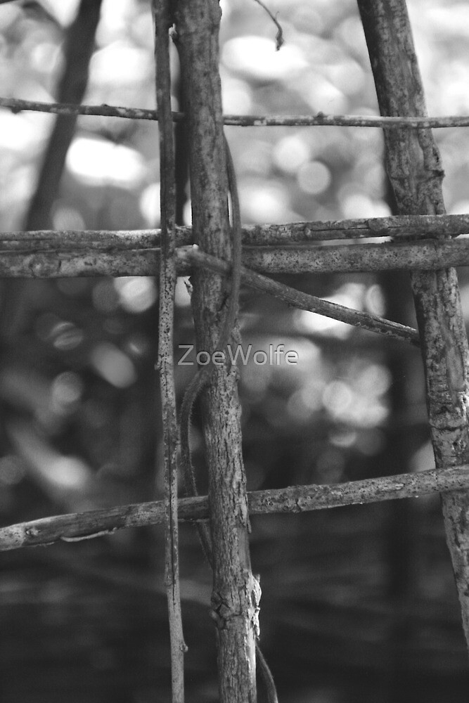 Untitled by ZoeWolfe
