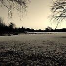 A Winter Plain by KChisnall