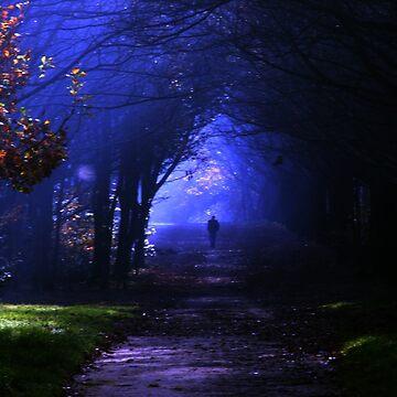 Into the shadows by spottydog06