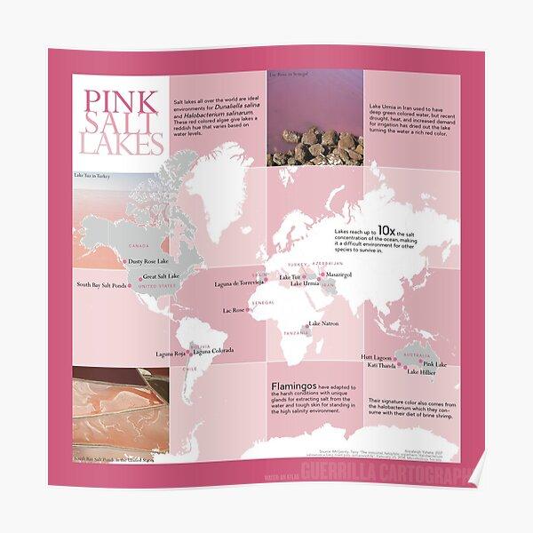 Pink Salt Lakes (light)  Poster