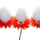 Eggsactly Balanced by Rebecca Cozart
