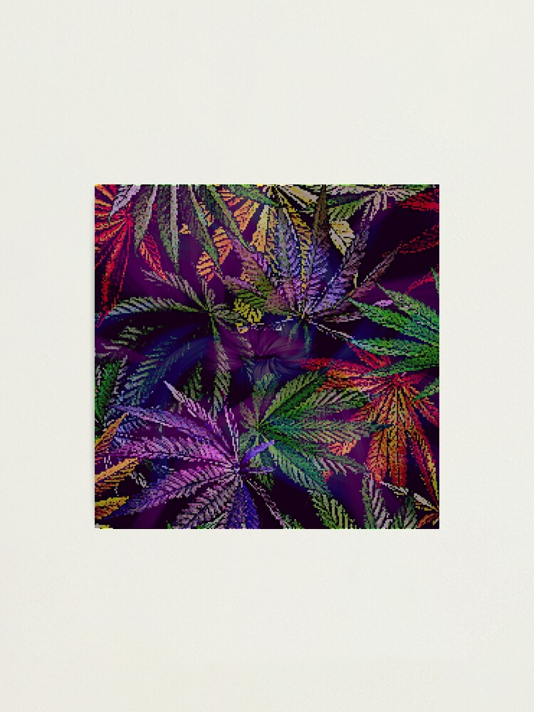 Alternate view of Psychedelic Marijuana Cannabis Leaves Photographic Print