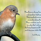 Bluebird and Blessing  by Bonnie T.  Barry