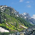 Cascade Canyon by Mark Bolen