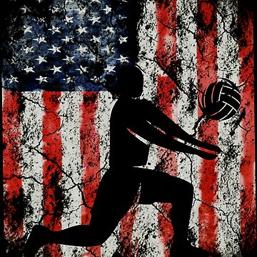 Volleyball american usa flag by furioso