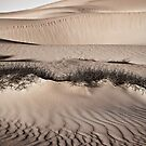 Sandy Slopes by aabzimaging