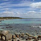 Panorama of cove with piers by Richard Majlinder