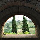 Through The Arch by hans p olsen