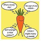 Kevin the Carrot by Edward Picot