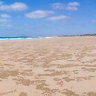gantheaume beach by Elliot62