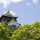 Osaka Castle by geep44