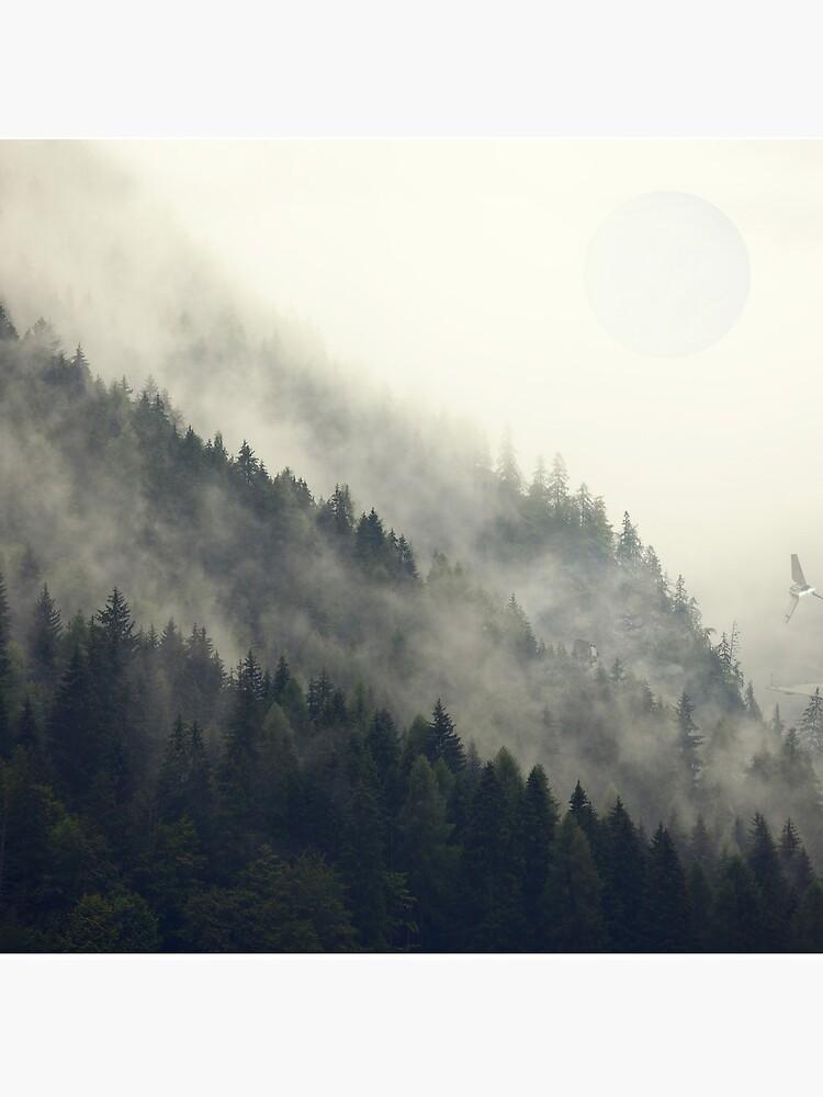 Forest Moon by andywynn