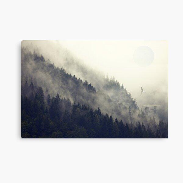 Lune de la forêt Impression sur toile