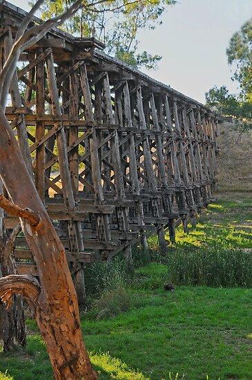 Pyalong Rail Bridge #2 by mspfoto