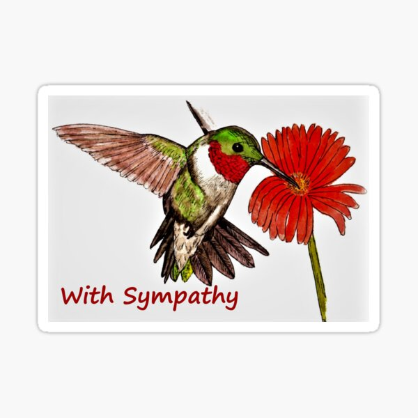 Humming Bird Sympathy Card Sticker