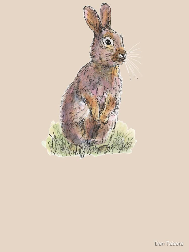 Rabbit by dmtab