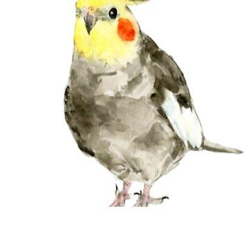 Cockatiel - Bird Shirt - Cute Cockatiel - Gift For Bird Lovers - Bird Art by Galvanized