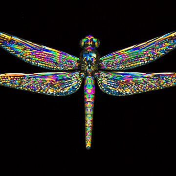 Dragonfly 2 by Neboal