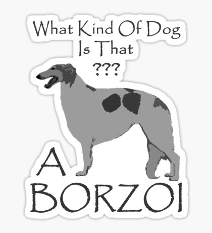 What Kind Of Borzoi Is That? Sticker