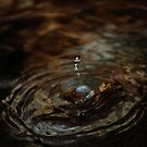 Just A Drop Of Water by laureenr