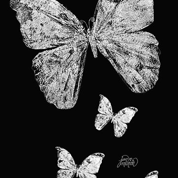 White Butterflies by janmarvin