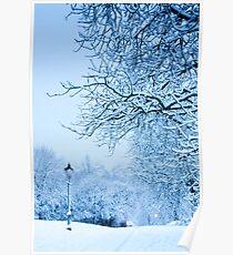 Narnia?! Poster