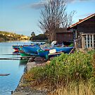 Boats at rest by Silvia Ganora