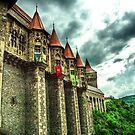 Corvin Castle by Appel
