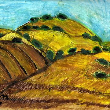 California Hills In Summer by RobynLee