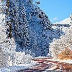 Wintry Road. by Valentina Gatewood