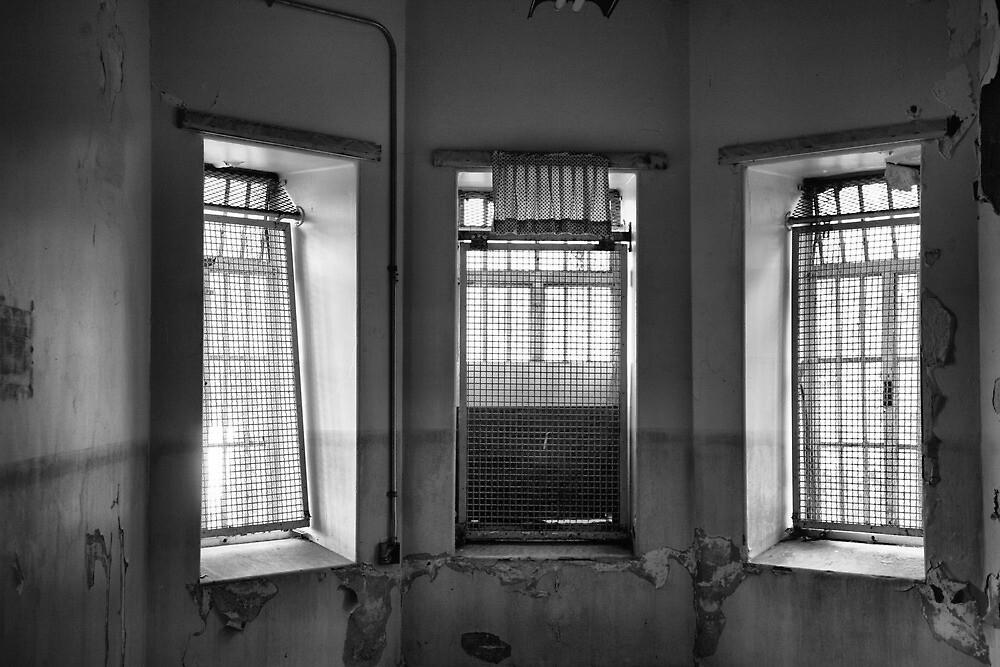 caged in #2 by jbiller