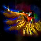 The Mad Macaw by Brian Tarr