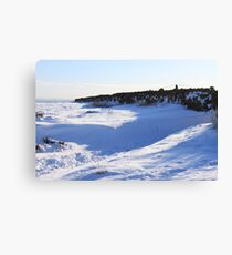 snow drift alluring Canvas Print