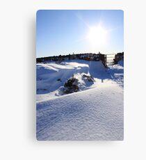 stunning snow forms Canvas Print